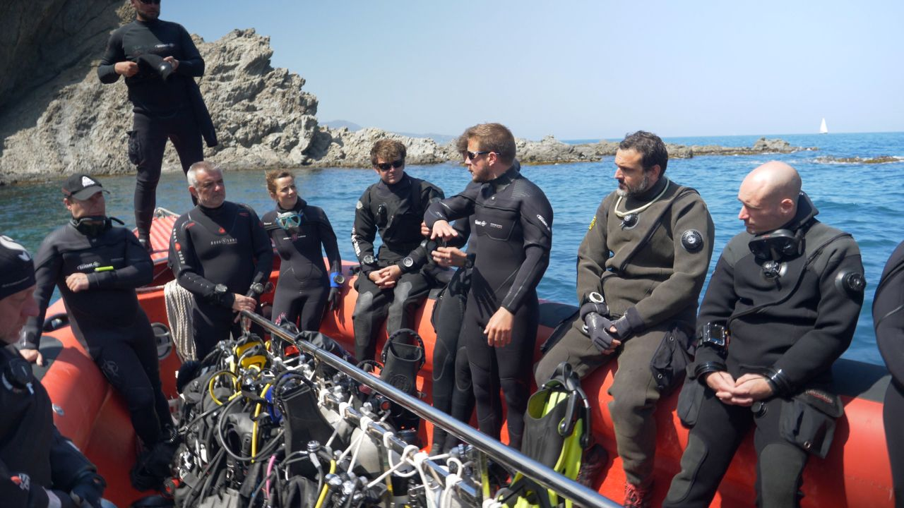 Dives organization