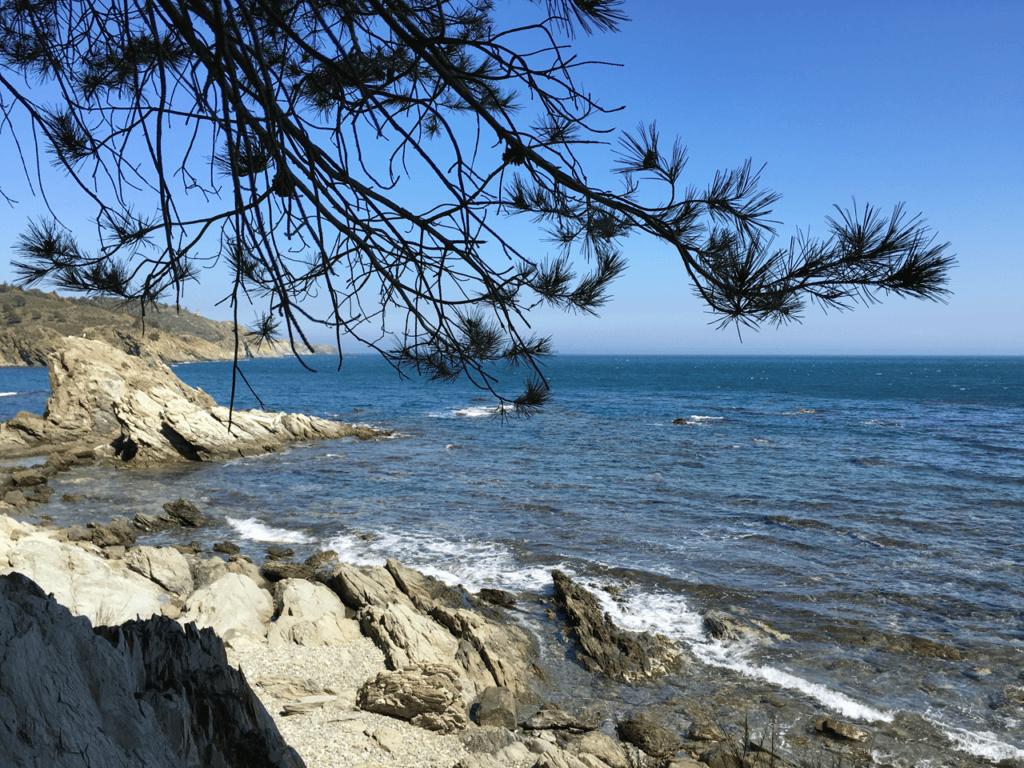 Port-vendres : anse de paulilles